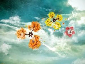 Imagini-Artistice-Desktop-Flori-de-Toamna-1