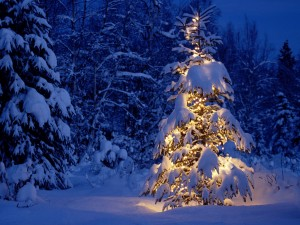 craciun-peisaje-de-iarna-zapada-peste-brazi